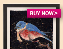 bluebird_with_scarf_framed_thumb