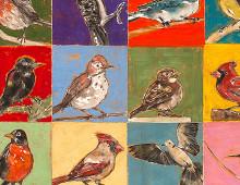 Pick a Bird