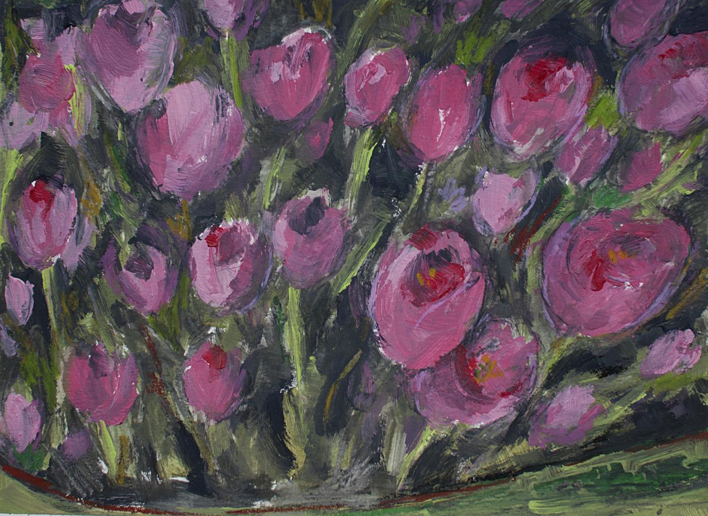 Pink Tulips at the Memphis Botanic Gardens
